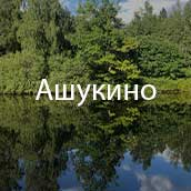 Ашукино